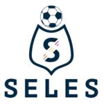 Futsal Seles