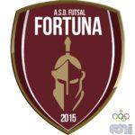 Futsal Fortuna