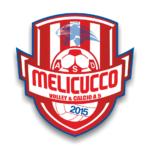 V. Melicucco